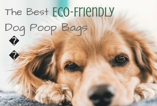 Best Eco-Friendly Dog Poop Bags [Rated by Type]