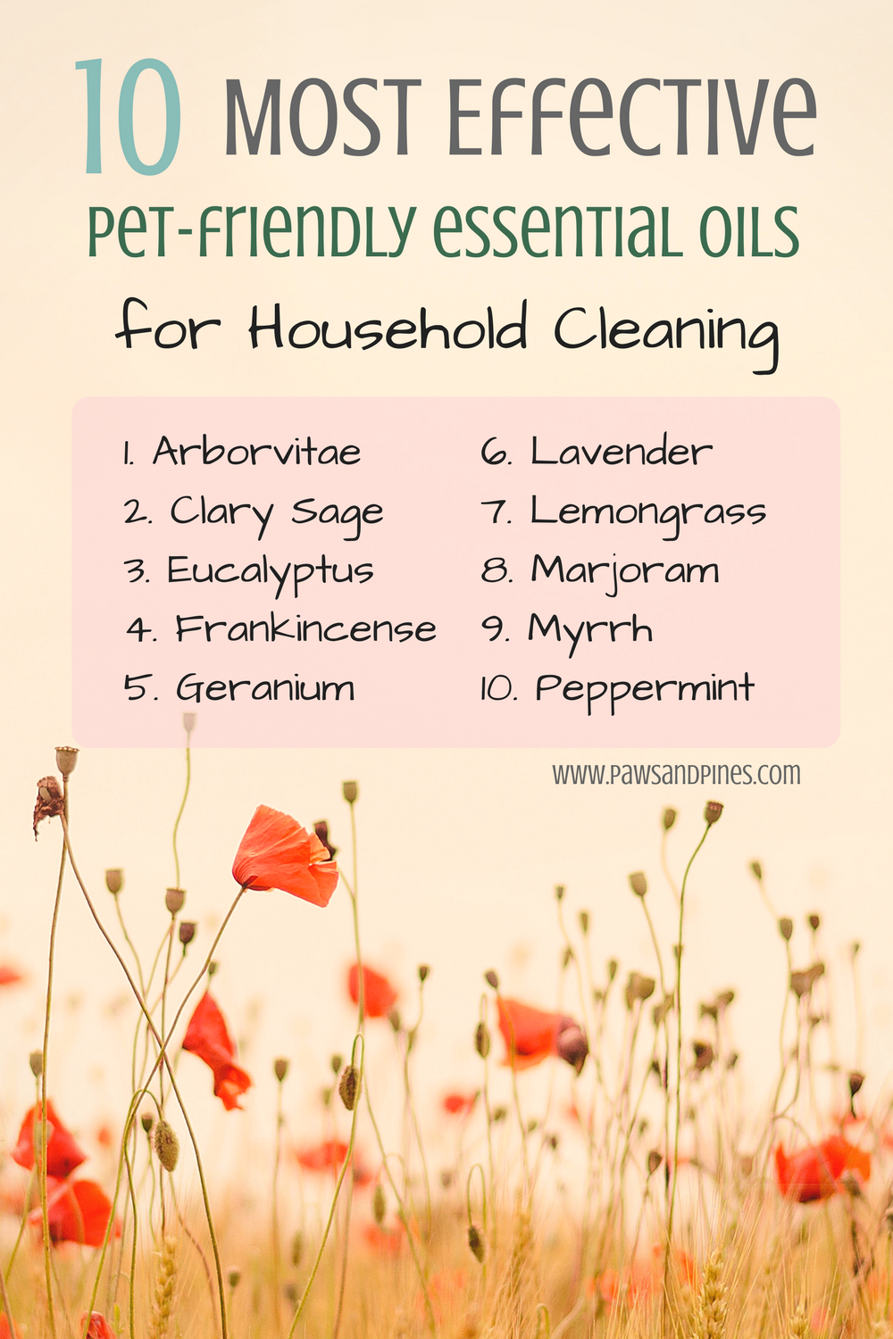 10 Most Effective Pet-Friendly Essential Oils for Household Cleaning