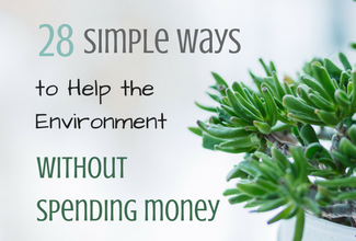 Simple Ways to Help the Environment Without Spending Money