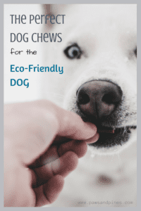 A dog being fed a treat with text overlay: The Perfect Dog Chew for the Eco-Friendly Dog