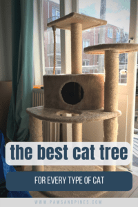 Large cat tree with text overlay: the best cat tree for every type of cat