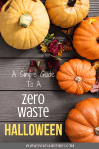 array of pumpkins with text overlay: A Simple Guide to a Zero Waste Halloween