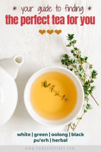A cup of herbal tea with text overlay: Your Guide to Finding The Perfect Tea For You