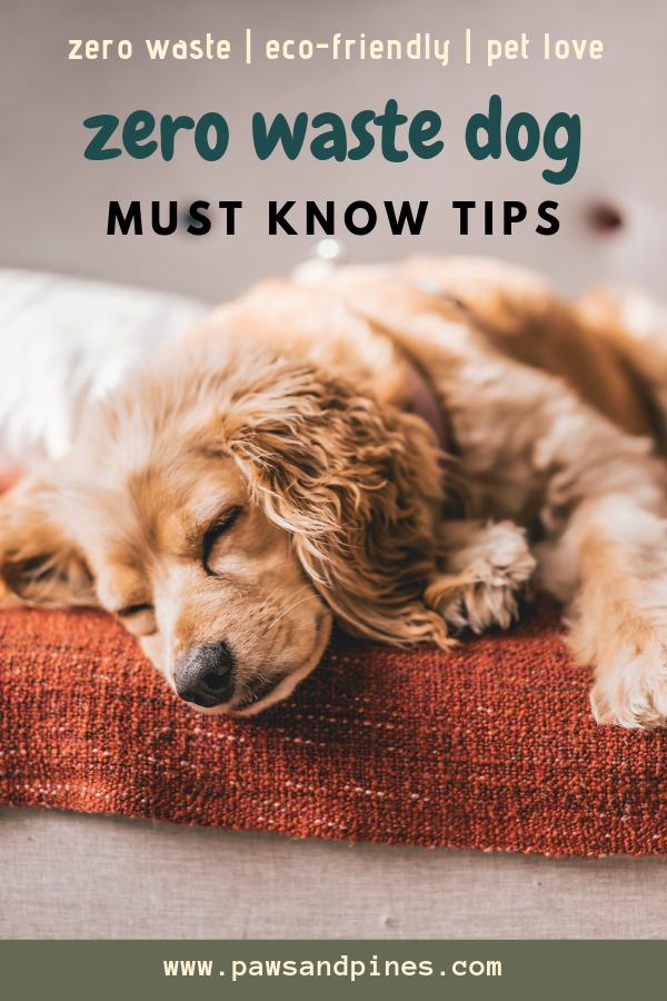 sleepy dog with text overlay: zero waste dog | must know tips